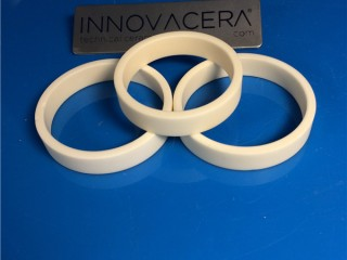 Wear Resistant Alumina Ceramic Seal